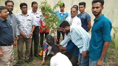 শাহনেয়ামতুল্লাহ কলেজ ছাত্রলীগের উদ্যোগে বৃক্ষ রোপন