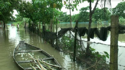 সুনামগঞ্জে বন্যার পানিতে ভেসে গেছে ২১ কোটি টাকার মাছ