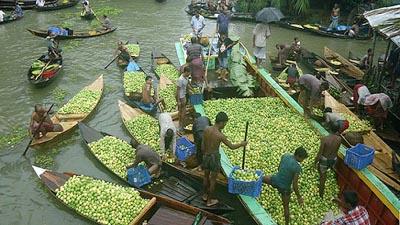 ভিমরুলীর ভাসমান পেয়ারা বাজার