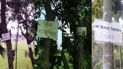 রাঙ্গামাটিতে সড়কের গাছে-গাছে আল্লাহ তায়ালার জিকির!