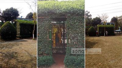 মোহাম্মাদী গার্ডেন রয়েছে পাতার তৈরী ঘর
