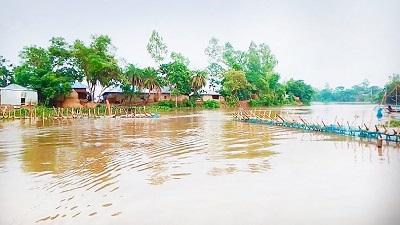 সিংড়ায় নদী দখল করে অবৈধভাবে মাছ শিকার