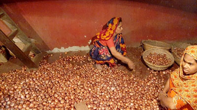 আজকের পেঁয়াজের বাজার দর, কোথায় কত জেনে নিন