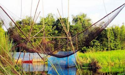 সরকারি জলাশয়ে বাঁধ দিয়ে মাছ শিকার