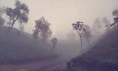 শ্রীমঙ্গলে তাপমাত্রা ১১.৪ ডিগ্রিতে নেমেছে