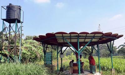 সোলার প্যানেল দ্বারা পাতকুয়ার পানি দিয়ে সবজি চাষ