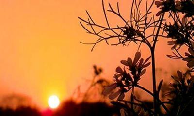 বিদায় নিচ্ছে শীত, বাতাসে বসন্তের দোল