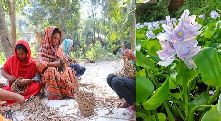 কচুরিপানায় স্বপ্ন বুনছেন গৃহিনীরা, রপ্তানি হচ্ছে বিদেশে
