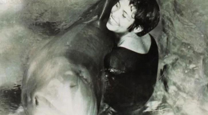 তরুণীর সঙ্গে সম্পর্ক বিচ্ছেদের পরে ডলফিনের 'আত্মহত্যা'