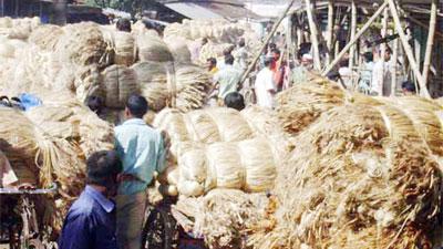 অনুমোদন ছাড়াই পাট মজুদ করছে মৌসুমি ব্যবসায়ীরা
