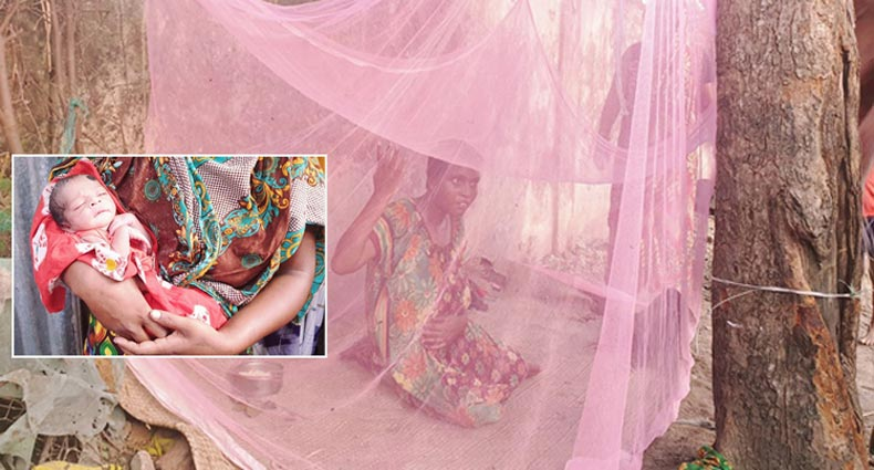 রাস্তায় সন্তান জন্ম দিয়ে মৃত্যুপথযাত্রী পাগলি