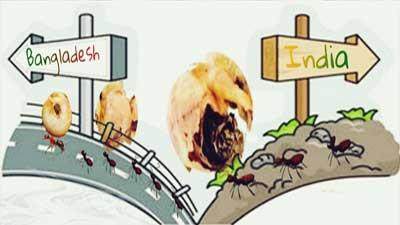 পিঁপড়া খেল লাভের গুঁড়