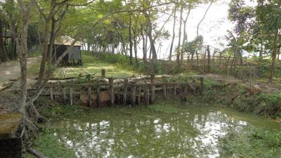 নলছিটিতে সরকারি খালে মাছ চাষ, প্রতিবাদে মামলার হুমকি