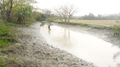 রাজাপুরের পোনা নদী এখন মরা খাল