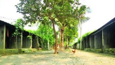 ঝিনাইদহে আশ্রয়ণ প্রকল্পের ৯৩৭ ঘর ফাঁকা