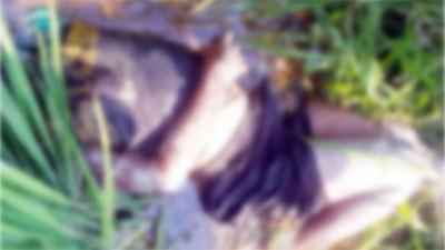 কুড়িগ্রামে ধান ক্ষেতে ভারতীয় তরুণের লাশ
