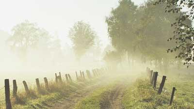কুয়াশায় ভেসে আসছে শীত