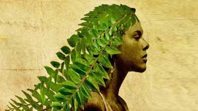 নারীদের টাক সমস্যা থেকে মুক্তি দিবে যে পাতা
